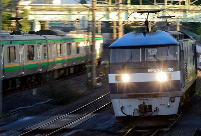 DSC_7318.JPG