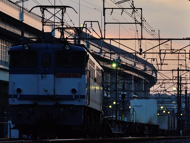 DSC_7557.JPG
