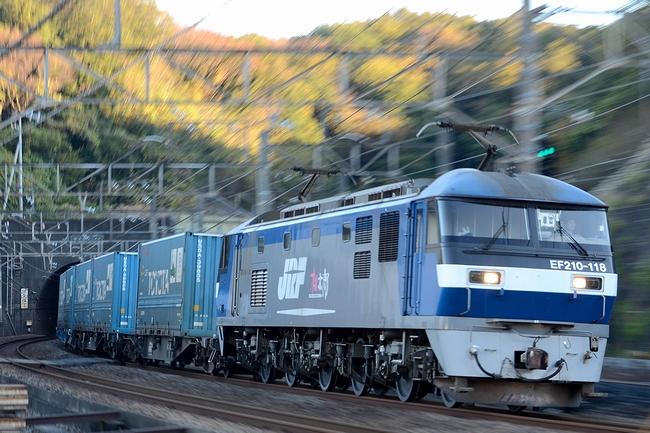 DSC_9982.JPG
