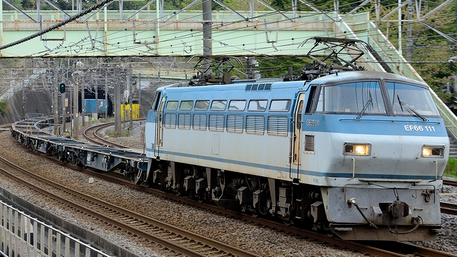 DSC_8257.JPG